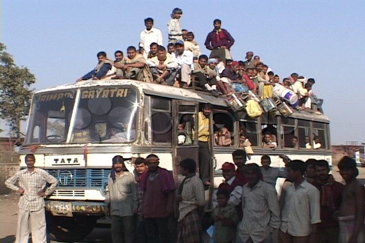 Sardynki w busie, czyli Wielkanoc i powrót do domu